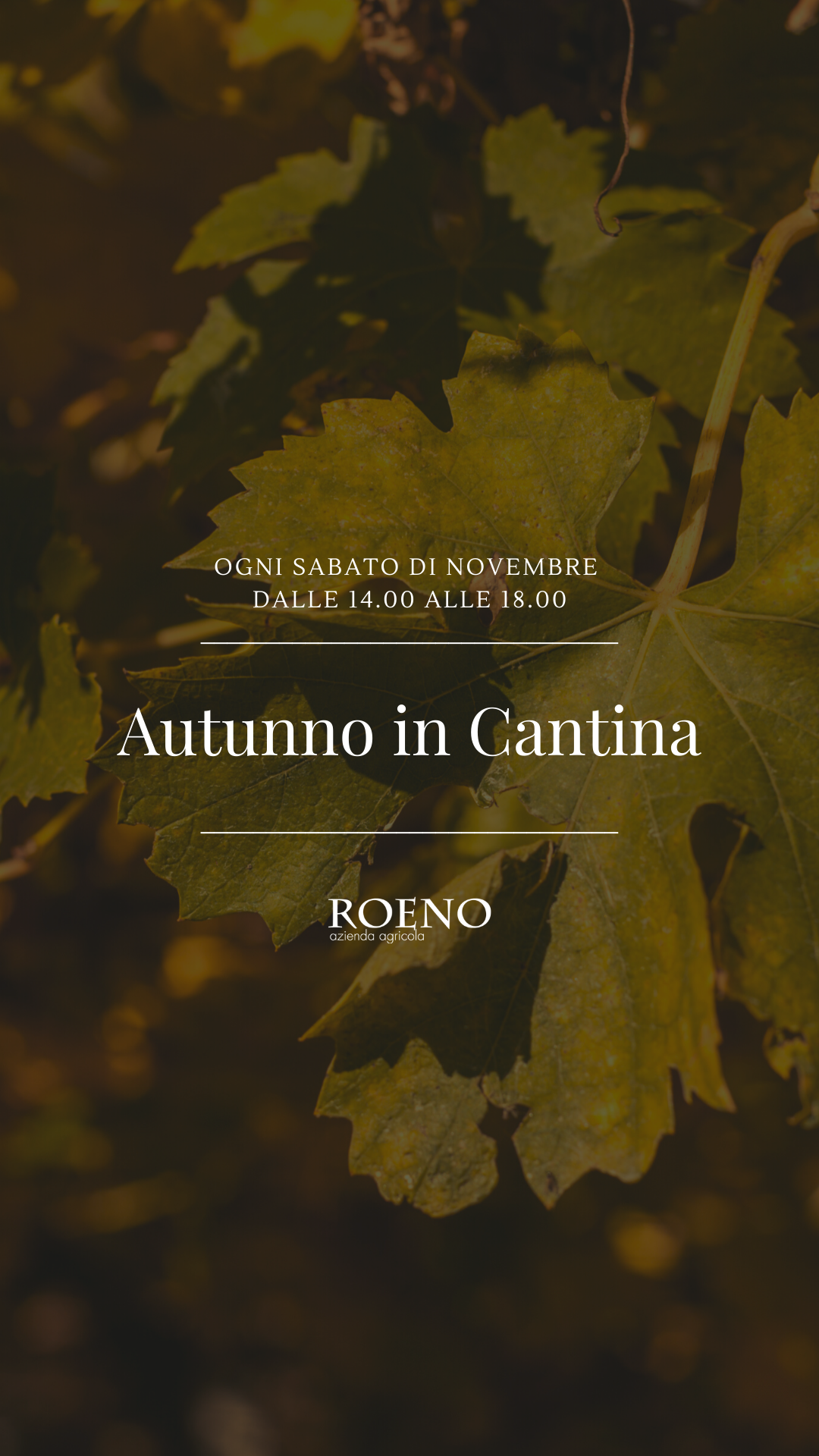 Autunno in cantina ?