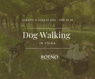 Dog Walking in Vigna 🍇🐶